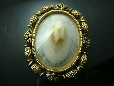 Vintage Gold Tone Framed Shell Oval Pin Brooch Pendant