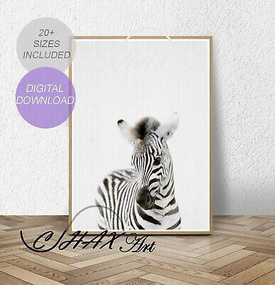 Zebra Print.Nursery Wall Art.Woodland Decor.Animal Prints.Baby.Wall Poster.010
