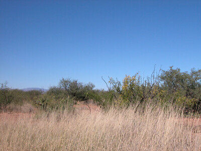 .16 +/- Acres | Land Ownership 2 Tucson. Great Investment Property.