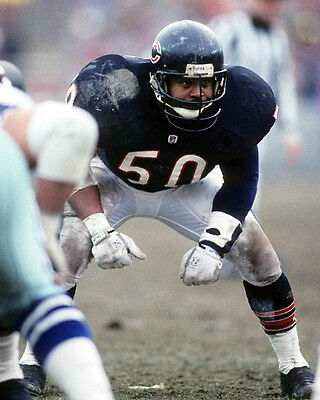 4921f7e3a5a Chicago Bears MIKE SINGLETARY Glossy 8x10 Photo NFL Football Print Poster