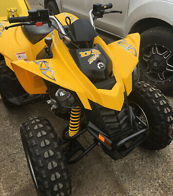 Can-Am Ds250 2008 Atv