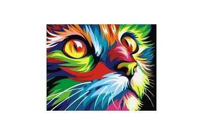Wizardi Paint By Numbers Kit - Rainbow Cat - includes mini easel