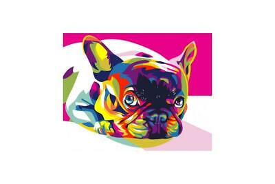 Wizardi Paint By Numbers Kit - French Bulldog- Rainbow Dog - includes mini easel