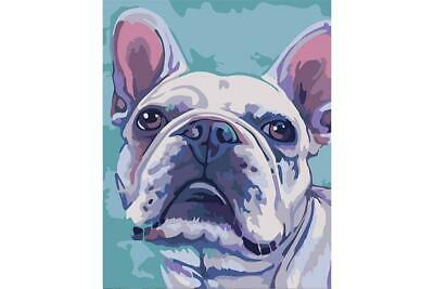 Wizardi Paint By Numbers Kit - Bulldog -  Dog - includes mini easel