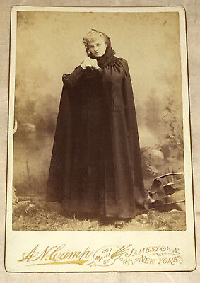 Vintage Cabinet Card Photograph by A. N. Camp of Jamestown, New York  c 1880