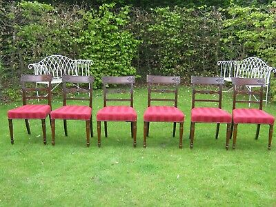 A Good Set Of 6 Original Regency Mahogany Dining Chairs Circa 1820