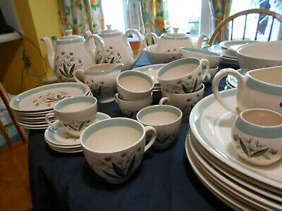 Alfred Meakin Hedgerow- plates, coffee pot, tea pot, bowls,cups and saucers