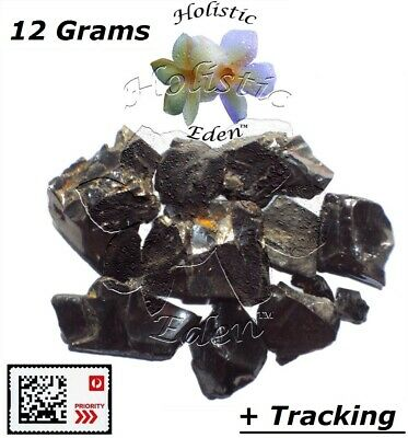12 g Elite Noble Shungite Rough Crystal Chips Miracle Healing Stone EMF Protect