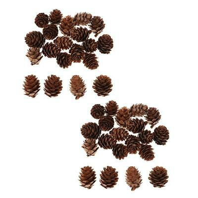40 PCS Natural Pinecones Pine Cone for Thanksgiving Christmas Decoration DIY
