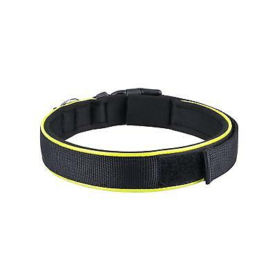 LARGE Nylon Dog Collar with Soft Padded,Dog ID Tags,D-Ring and Adjustable