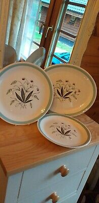 """Alfred Meakin Hedgerow Design Assorted 12"""" server and 10"""" and 9"""" plates."""