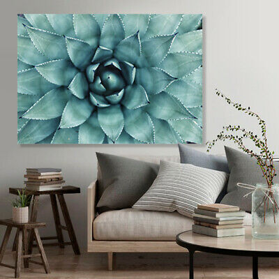 Cactus Succulent Print On Stretched Canvas Prints Wall Art Home Picture Flower