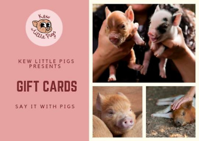 Kew Little Pigs Gift Cards!