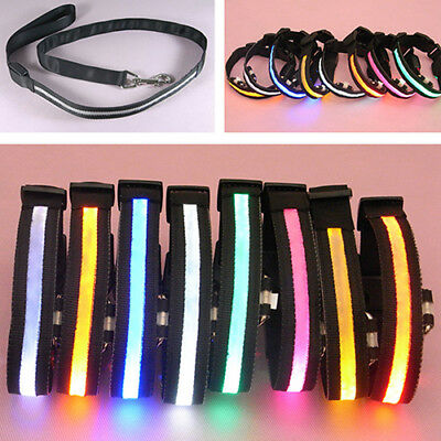 ITS- Bright LED Light-Up Flashing Puppy Dog Cat Pet Collar Full Plain Design Nov