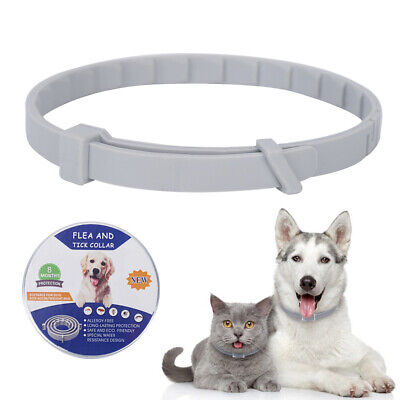 Adjustable Pet Dog Cat Collar Padded Waterproof Protect Insect Reject Non-Toxic