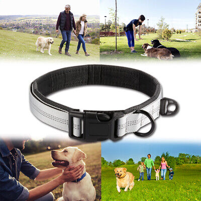 Adjustable Pet Dog Collar with Heavy Duty Quality D-ring Buckle for Medium Dogs