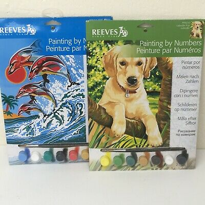 Reeves Painting by Numbers  Kit - 22.5cm  x 30.0cm Dog Dolphin & Bundle #76