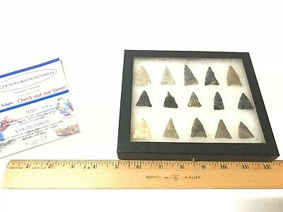 NATIVE AMERICAN Artifact Collection in Frame 15 Bird Point Arrowheads NICE!