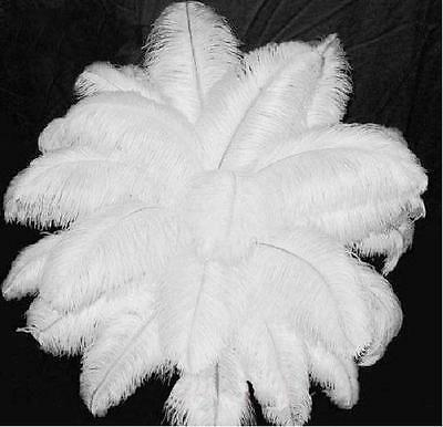 """50PCS 12""""-14"""" Creative Home Wedding Party Decor Ornaments Ostrich Feathers White"""