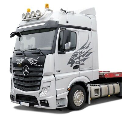 """Zierblende V2A 22,5"""" Radkappe Mercedes Benz LKW Truck Actros MP 2  MP 3 MP 4"""