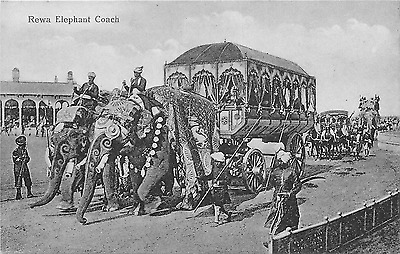 India Rewa Elephant Coach Postcard