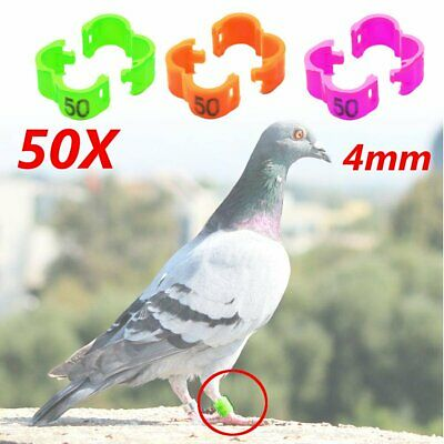 4mm 1-50 Numbered Clip Snap Bird Ring Leg Bands Parrot Finch Canary Duck Pet