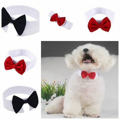 Dog Cat Pet Accessories Bow Tie Adjustable Necktie Kitten Collar Bandana Bowtie