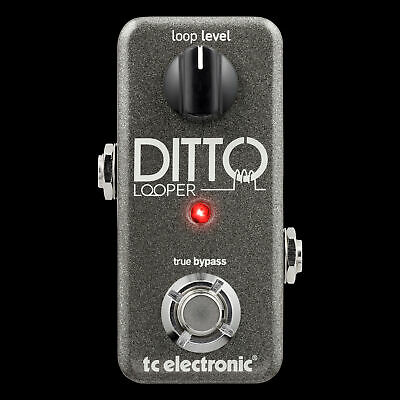 TC Electronic DITTO Looper Guitar Effects Pedal ditto