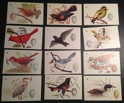 R3131.General Mills cereal Canadian, Birdlife series 29/50 mainly ex. or better