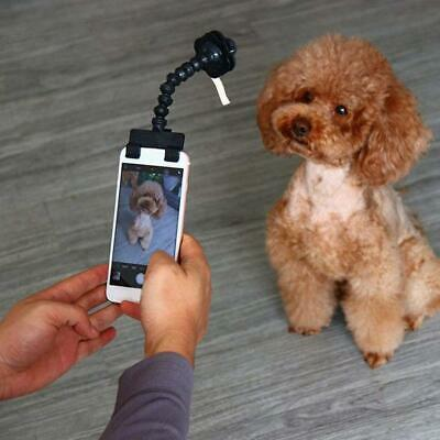 Pet Selfie Stick Rod For Dogs Cat photography Tools Pet Interaction Toys