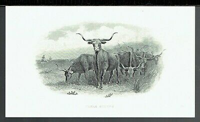ABNC  'Texas Steers' Time-Life  19th Century Intaglio Reprint 1978