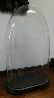 a large glass dome