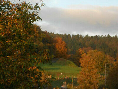 October midweek 4 nights dogfriendly cottage Forest of Dean