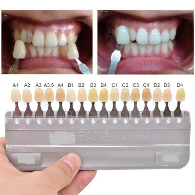 VITA Classical VitaPan Toothguide Porcelain Teeth Bleached Shade 16 Color Dental