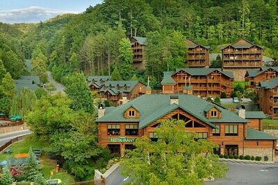 Smoky Mntns. Aug 10-17 sleeps 6 with daily waterpark passes/can bring dog