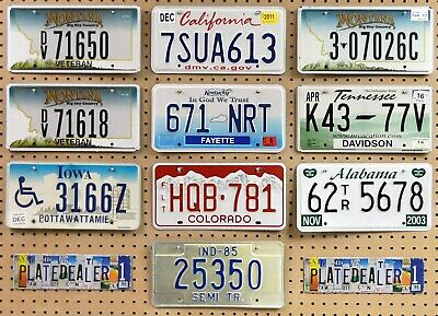 10 MIXED STATE Crafting License Plates MT CA MT MT KY TN IA CO AL IN Lot 650