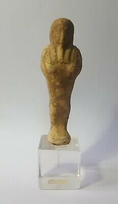 SHABTISHOP - GENUINE Ancient Egyptian Anepigraphic PTOLEMAIC Ushabti, c 200 BC