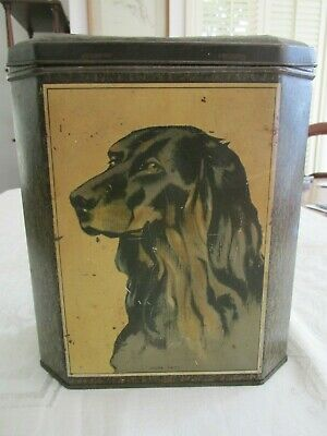 Vintage Macrobertson Chocolate or Biscuit Tin Home Pets Dogs Dog