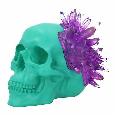 "Fantasy Art Skull Figurine "" Amethyst Crystal Skull "" by Nemesis Now"