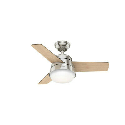 Moderm Finley 3 Blade 91cm Indoor Ceiling Fan with Lights with Remote Controls