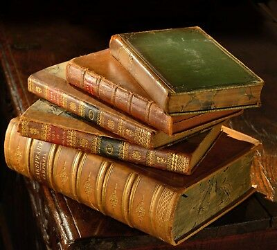 115 Rare Books on DVD Bookbinding - Antique Leather Repair Restore Gilding 252