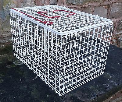White Cat Basket  Pet Carrier Wire Mesh Plastic Coated Hygienic Manufacturing