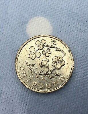 2014 IRELAND/Irish Floral Emblem Shamrock & Flax £1 ONE POUND COIN - Circulated