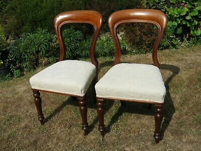 A MAGNIFICENT Pair of LARGE Victorian Mahogany Balloon Back Dining Chairs