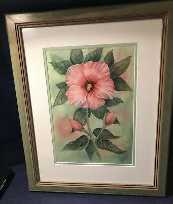 Framed Original Watercolor Painting by Toni Chaplin Hibiscus Flower Signed