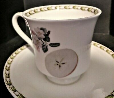 Vintage Queens Hookers Fruit English Fine Bone China Footed Cup & Saucer