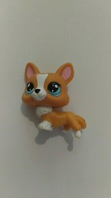 LPS LITTLEST PETSHOP PET SHOP dog chien corgi 2290