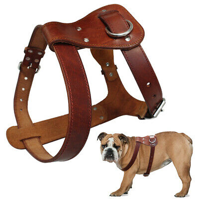 Genuine Leather Small Large Dog Harness Heavy Duty for Bulldog Pit Bull Boxer
