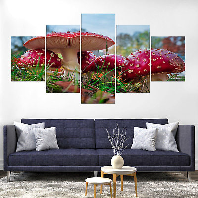 Fly Agaric Amanita Muscaria Mushroom Canvas Print Painting Deco Wall Art Picture