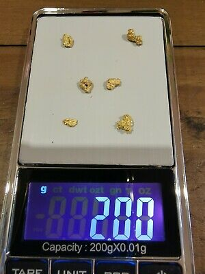 Gold Nuggets 2.00 grams